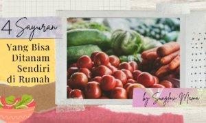 Read more about the article 4 Sayuran Yang Mudah Ditanam Di Rumah Untuk Pemula
